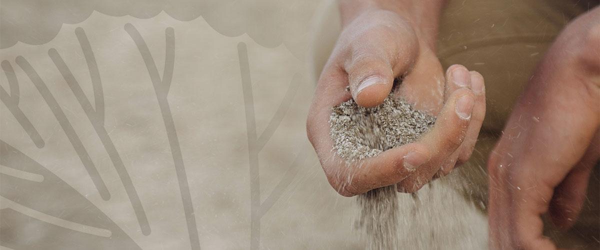 soil sample studies